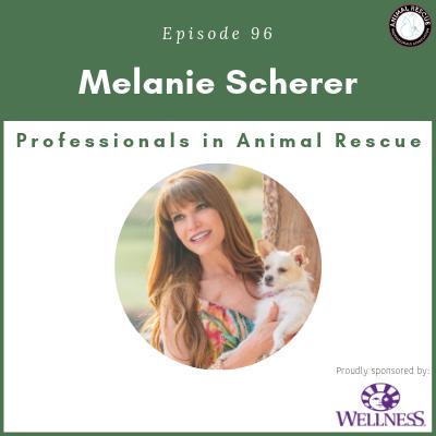 Episode 96 – Melanie Scherer