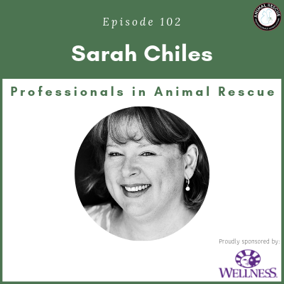 Episode 102 – Sarah Chiles