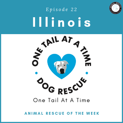 Animal Rescue of the Week: Episode 22 – One Tail At A Time in Illinois