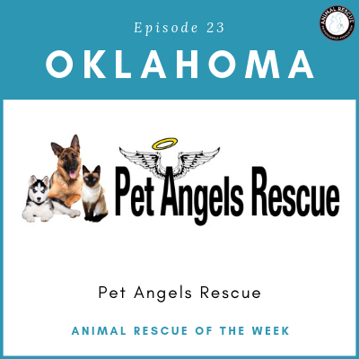 Animal Rescue of the Week: Episode 23 – Pet Angels Rescue in Oklahoma