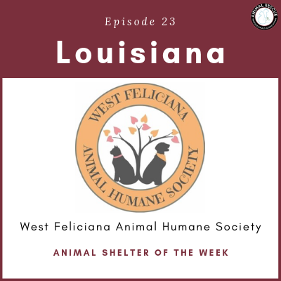 Animal Shelter of the Week: Episode 23 – West Feliciana Animal Humane Society in Louisiana