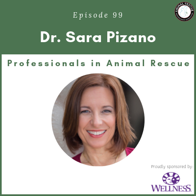 Episode 99 – Dr. Sara Pizano