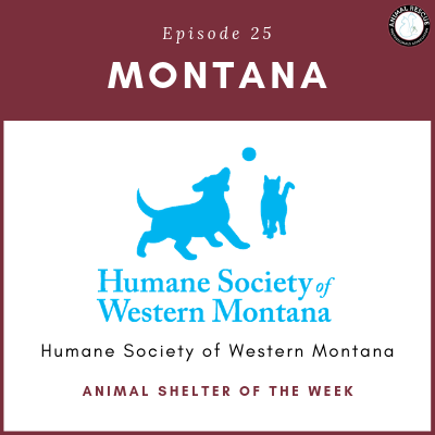 Animal Shelter of the Week: Episode 25 – Humane Society of Western Montana