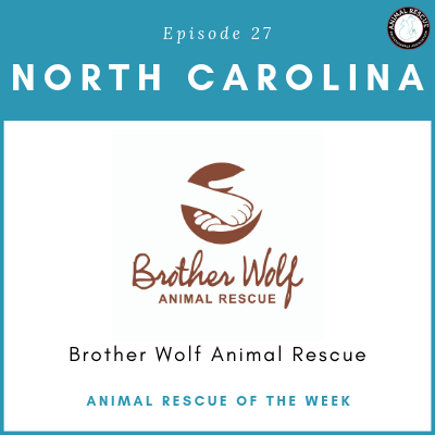 Animal Rescue of the Week: Episode 27 – Brother Wolf Animal Rescue in North Carolina