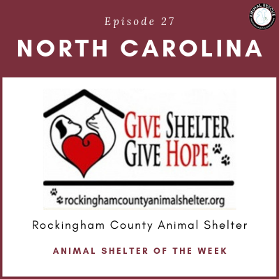 Animal Shelter of the Week: Episode 27 – Rockingham County Animal Shelter in North Carolina