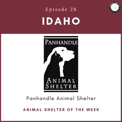 Animal Shelter of the Week: Episode 28 – Panhandle Animal Shelter in Idaho