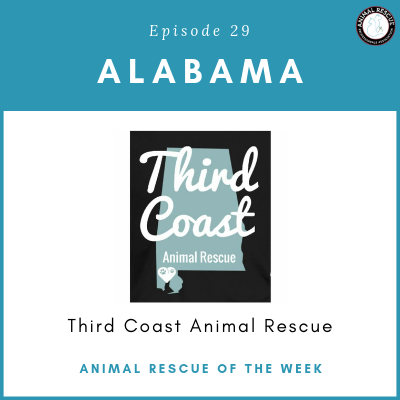Animal Rescue of the Week: Episode 29 – Third Coast Animal Rescue in Alabama