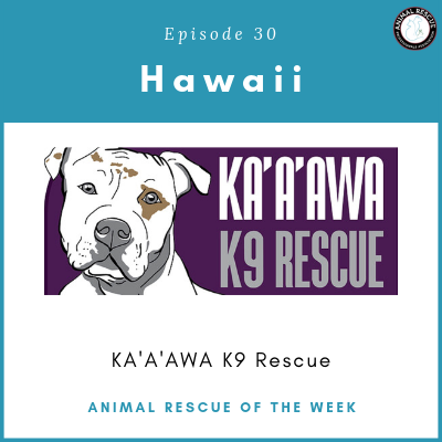 Animal Rescue of the Week: Episode 30 – KA'A'AWA K9 Rescue in Hawaii