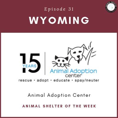 Animal Shelter of the Week: Episode 31 – Animal Adoption Center in Wyoming