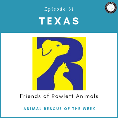 Animal Rescue of the Week: Episode 31 – Friends of Rowlett Animals