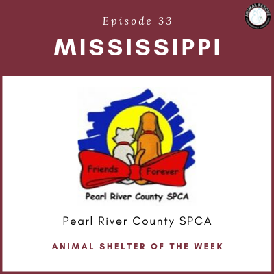 Animal Shelter of the Week: Episode 33 – Pearl River County SPCA