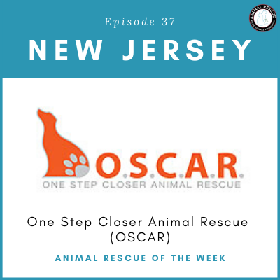 Animal Rescue of the Week: Episode 37 – One Step Closer Animal Rescue (OSCAR)