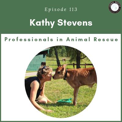 Episode 113 – Kathy Stevens