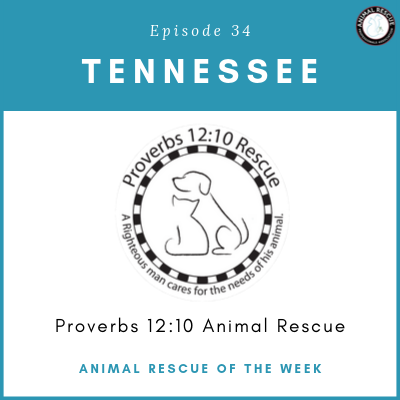 Animal Rescue of the Week: Episode 34 – Proverbs 12:10 Animal Rescue