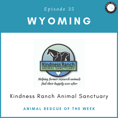 Animal Rescue of the Week: Episode 35 – Kindness Ranch Animal Sanctuary