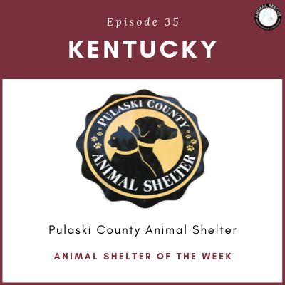 Animal Shelter of the Week: Episode 35 – Pulaski County Animal Shelter