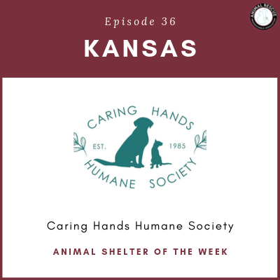 Animal Shelter of the Week: Episode 36 – Caring Hands Humane Society