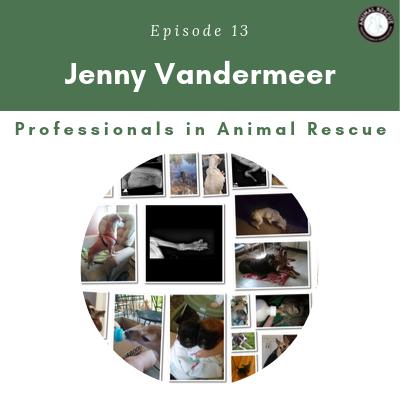 Episode 13 – Jenny Vandermeer