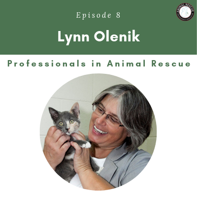 Episode 8 – Lynn Olenik