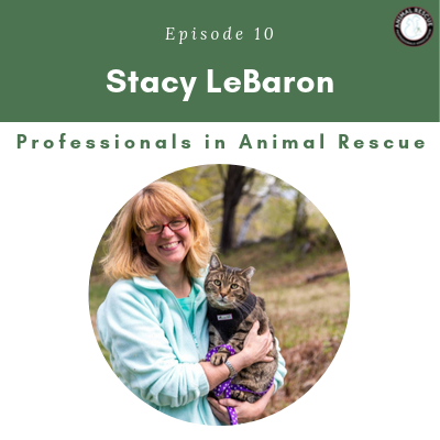 Episode 10 – Stacy LeBaron