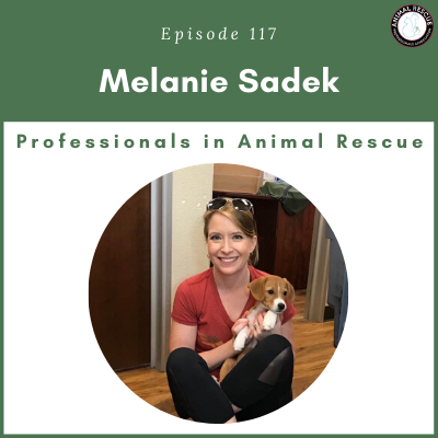 Episode 117 – Melanie Sadek