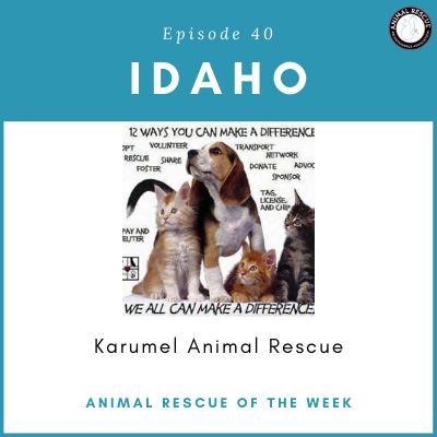 Animal Rescue of the Week: Episode 40 – Karumel Animal Rescue