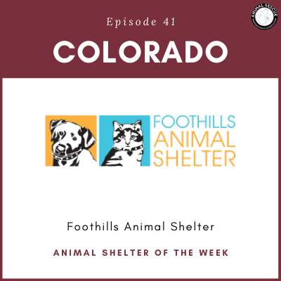 Animal Shelter of the Week: Episode 41 – Foothills Animal Shelter