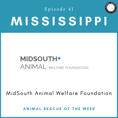 Animal Rescue of the Week: Episode 41 – MidSouth Animal Welfare Foundation