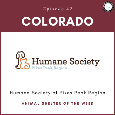 Animal Shelter of the Week: Episode 42 – Humane Society of Pikes Peak Region