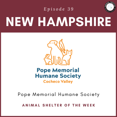 Animal Shelter of the Week: Episode 39 – Pope Memorial Humane Society