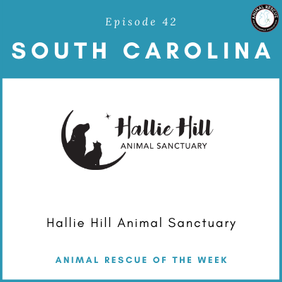 Animal Rescue of the Week: Episode 42 – Hallie Hill Animal Sanctuary