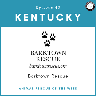 Animal Rescue of the Week: Episode 43 – Barktown Rescue