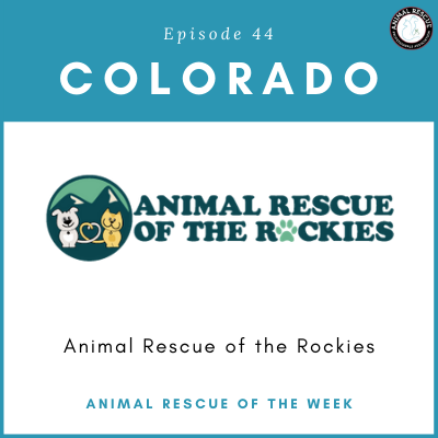 Animal Rescue of the Week: Episode 44 – Animal Rescue of the Rockies