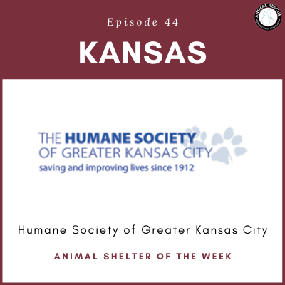 Animal Shelter of the Week: Episode 44 – Humane Society of Greater Kansas City