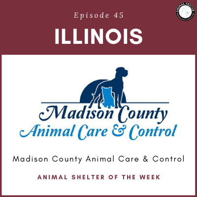 Animal Shelter of the Week: Episode 45 – Madison County Animal Care & Control