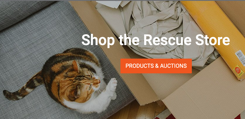 BONUS: Your Rescue Store