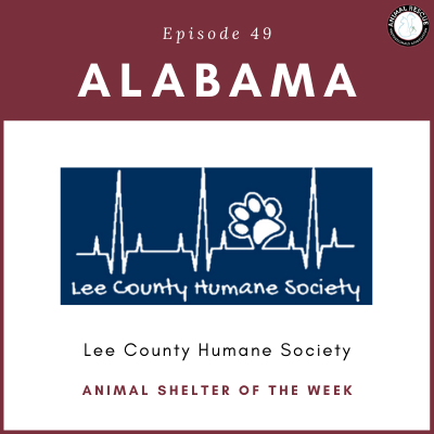 Animal Shelter of the Week: Episode 49 – Lee County Humane Society