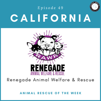 Animal Rescue of the Week: Episode 49 – Renegade Animal Welfare & Rescue