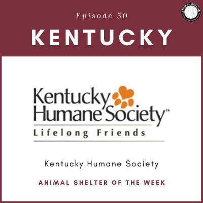 Animal Shelter of the Week: Episode 50 – Kentucky Humane Society