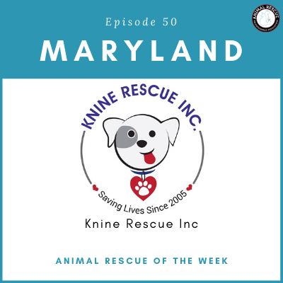 Animal Rescue of the Week: Episode 50 – Knine Rescue Inc