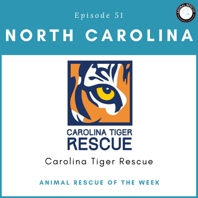 Animal Rescue of the Week: Episode 51 – Carolina Tiger Rescue