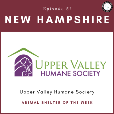 Animal Shelter of the Week: Episode 51 – Upper Valley Humane Society