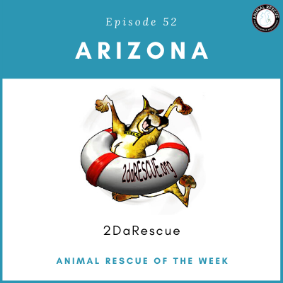 Animal Rescue of the Week: Episode 52 – 2DaRescue