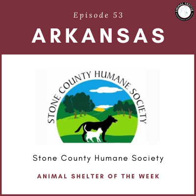 Animal Shelter of the Week: Episode 53 – Stone County Humane Society