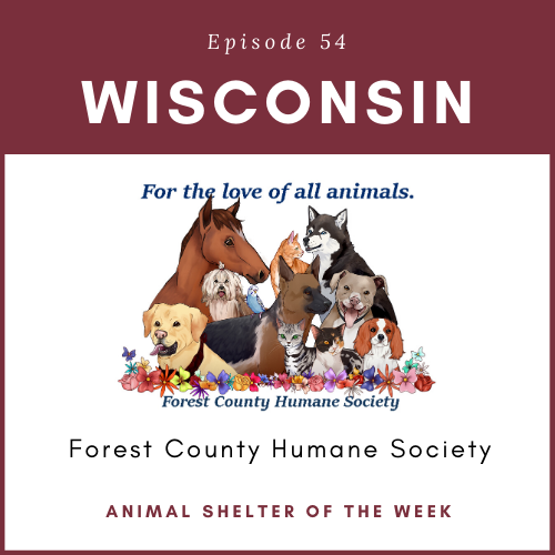 Animal Shelter of the Week: Episode 54 – Forest County Humane Society