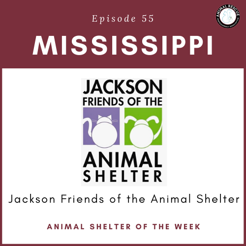 Animal Shelter of the Week: Episode 55 – Jackson Friends of the Animal Shelter