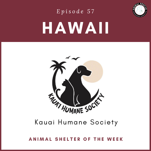 Animal Shelter of the Week: Episode 57 – Kauai Humane Society
